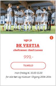 BK Vestia fodboldskole